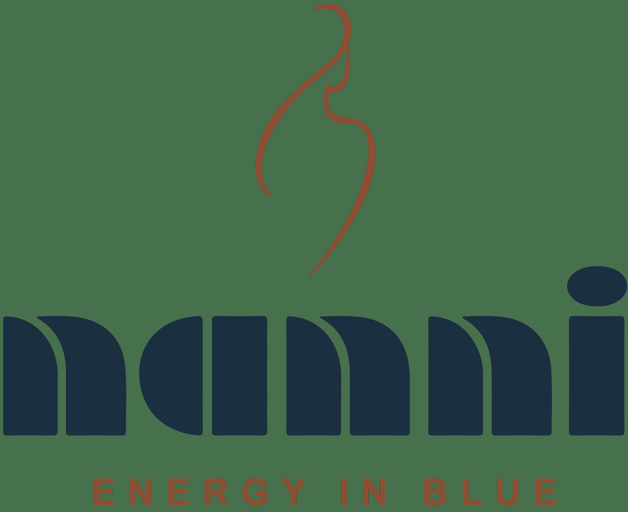 nanni logo